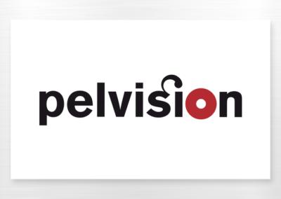 project_logo-pelvision